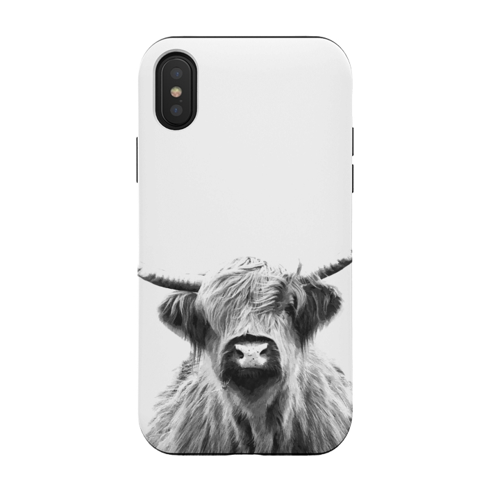Black and White Highland Cow