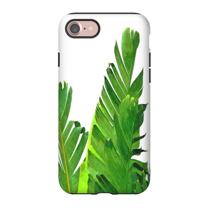 Palm Banana Leaves