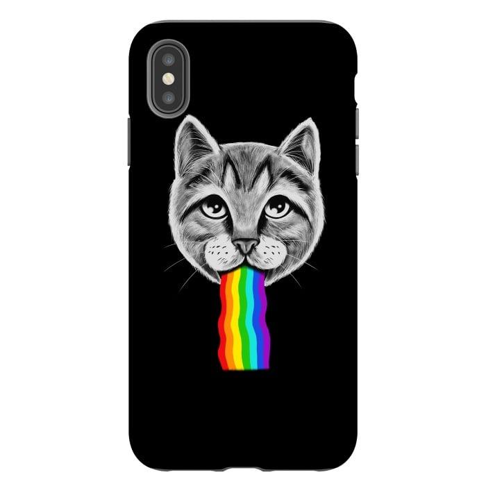 Cat rainbow