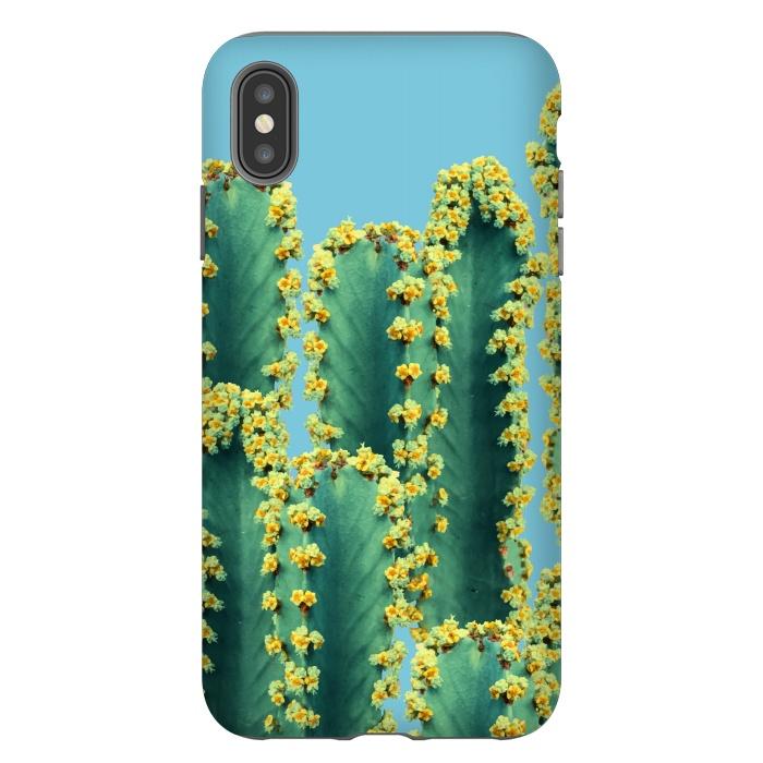Adorened Cactus V2