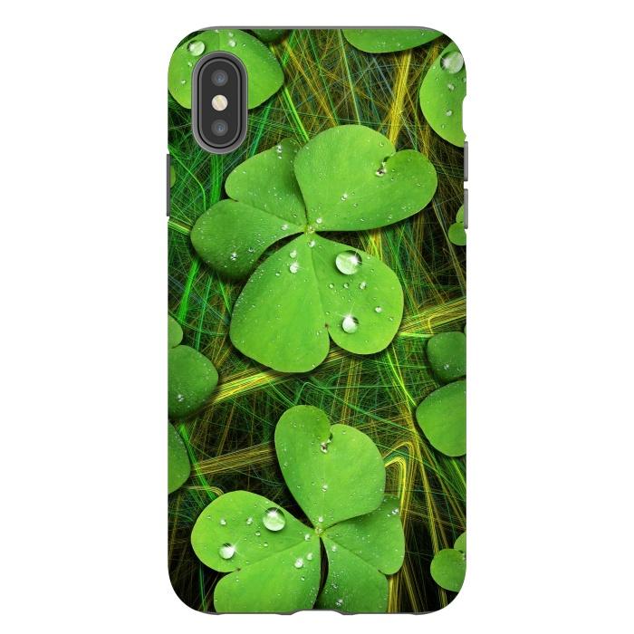 Shamrocks St Patrick with Dew Drops