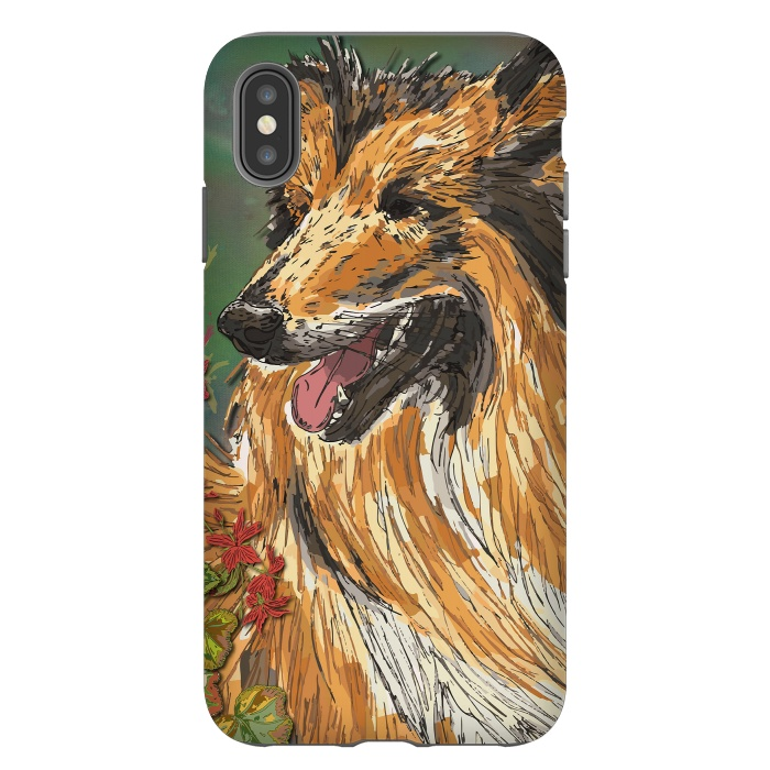 Rough Collie (Summer)