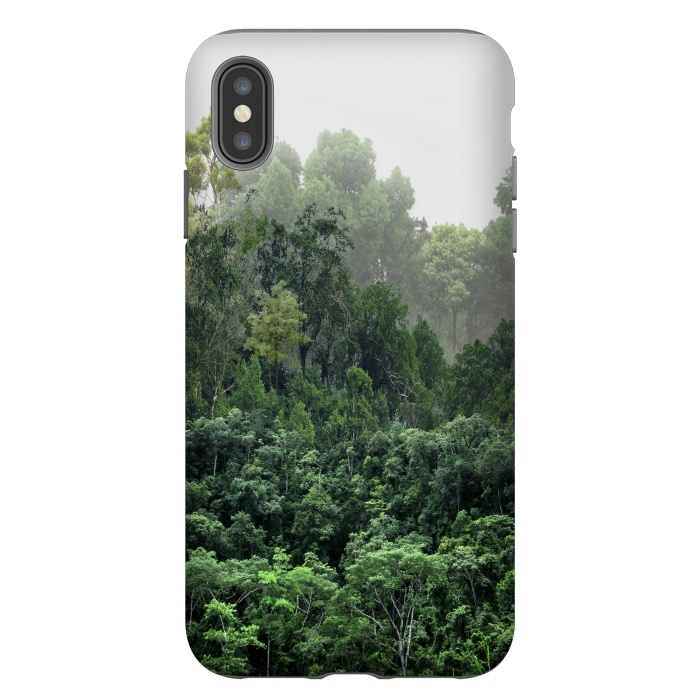 Tropical Foggy Forest