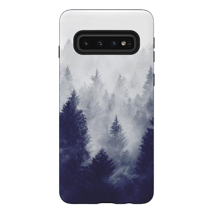 Foggy Woods II