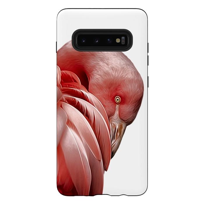 Flamingo Profile