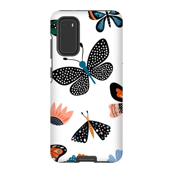 butterflies c
