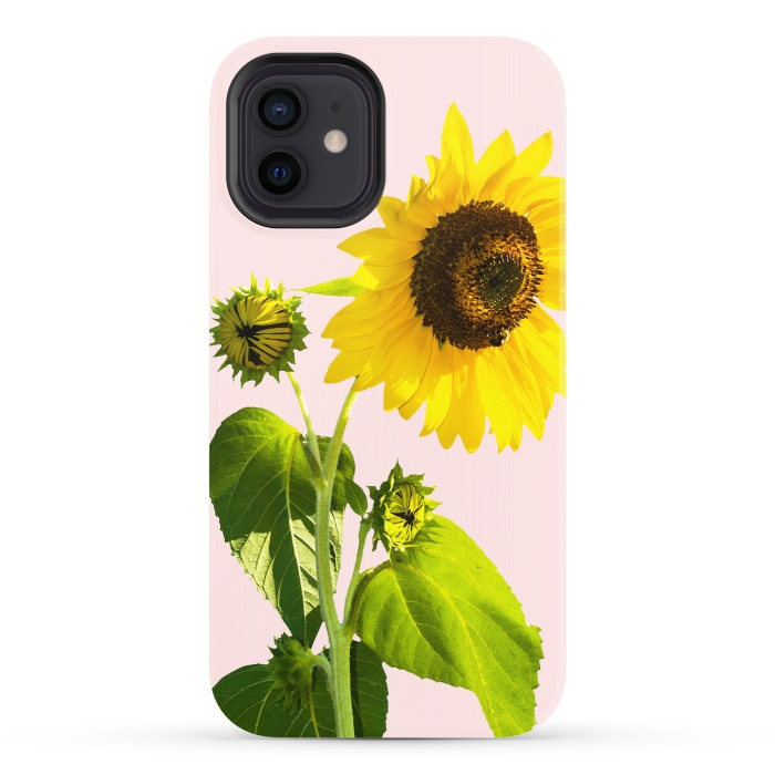 Sun Flower v2