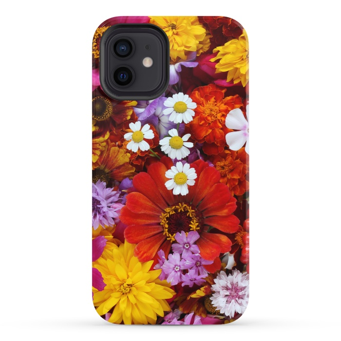 Flowers in Different Shapes and Colors V