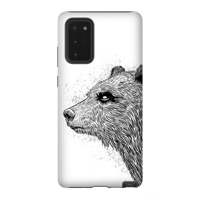 Sketch Bear