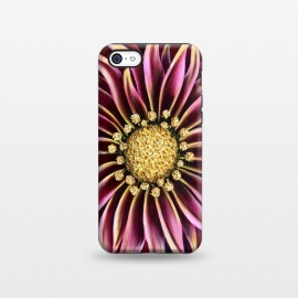 iPhone 5C  Pink Mum by Denise Cassidy Wood