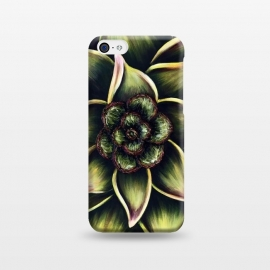 iPhone 5C  Succulent by Denise Cassidy Wood