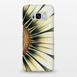 Galaxy S8+  White Gazania by Denise Cassidy Wood