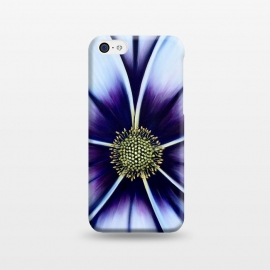 iPhone 5C  Ice Blue by Denise Cassidy Wood