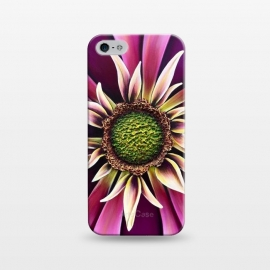 iPhone 5/5E/5s  Pink Burst by Denise Cassidy Wood