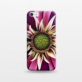 iPhone 5C  Pink Burst by Denise Cassidy Wood