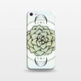 iPhone 5C  Sempervivum by Barlena