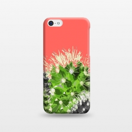 iPhone 5C  Cactus by MUKTA LATA BARUA