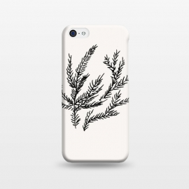 iPhone 5C  Summer Coral Fern by Caitlin Workman