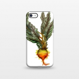 iPhone 5C  The Golden Beet by Elizabeth Mazur