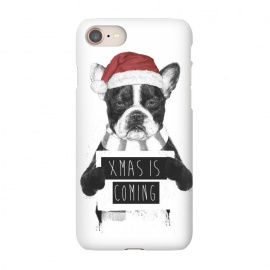 iPhone 8/7  Xmas is coming by Balazs Solti (dog,bulldog,xmas,christmas,holidays)