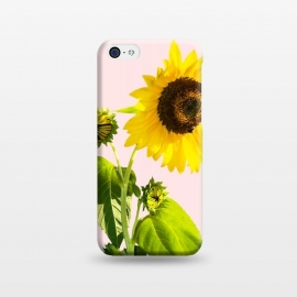 iPhone 5C  Sun Flower v2 by Uma Prabhakar Gokhale (realism, photo sun flower, floral, nature, summer, summy, exotic, blossom)