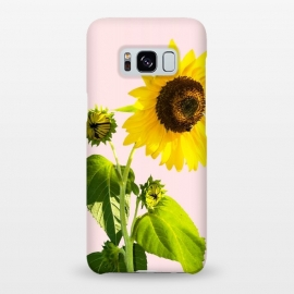 Galaxy S8+  Sun Flower v2 by Uma Prabhakar Gokhale (realism, photo sun flower, floral, nature, summer, summy, exotic, blossom)