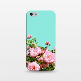 iPhone 5/5E/5s  Blissful by Uma Prabhakar Gokhale (graphic, floral, bloom, blossom, nature, roses, flowers, tropical, exotic)