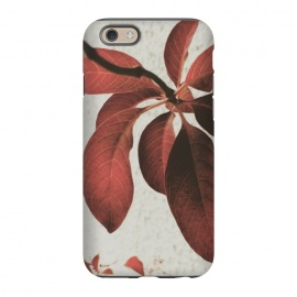 iPhone 6/6s  red flower by MALLIKA
