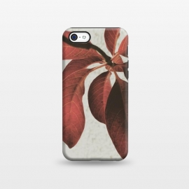 iPhone 5C  red flower by MALLIKA