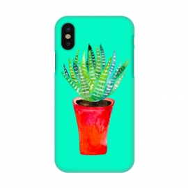 iPhone X  Potted Succulent  by Amaya Brydon