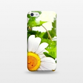 iPhone 5C  Daisy flower by Bledi