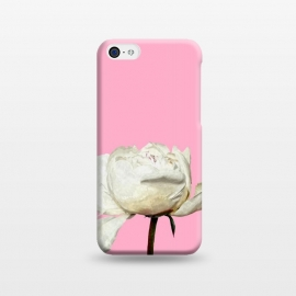 iPhone 5C  White Peony Pink Background by Alemi