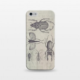 iPhone 5/5E/5s  Vintage Beetles And Bugs by Andrea Haase
