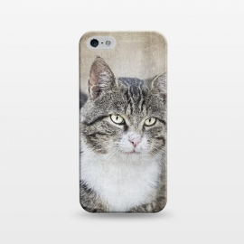 iPhone 5/5E/5s  Friendly Cat Mixed Media Art by Andrea Haase