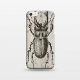 iPhone 5C  Stag Beetle Vintage Mixed Media Art by Andrea Haase