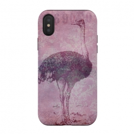 Vintage Pink Ostrich Art by Andrea Haase