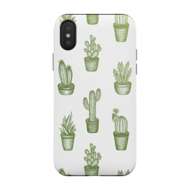 Succulents by Barlena