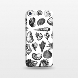 iPhone 5C  Vintage Seashell Collection Black And White by Andrea Haase