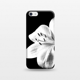 iPhone 5C  White Lily Black Background by Alemi