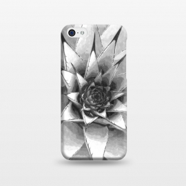 iPhone 5C  Black and White Cactus Succulent by Alemi