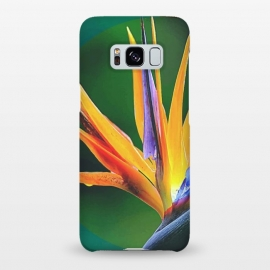 Galaxy S8+  Bird of Paradise by Creativeaxle