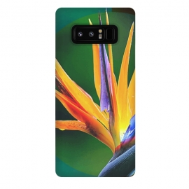 Galaxy Note 8  Bird of Paradise by Creativeaxle
