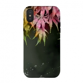 Acer Leaves by Creativeaxle