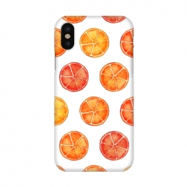 Orange Slices Citrus Print by Becky Starsmore