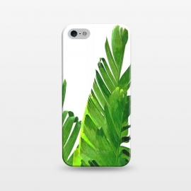 iPhone 5/5E/5s  Palm Banana Leaves by Alemi