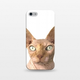 iPhone 5/5E/5s  Sphynx Cat Portrait by Alemi