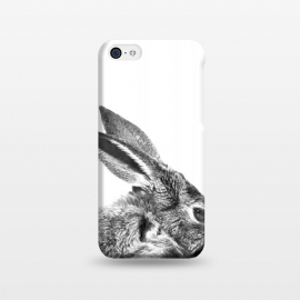 Black and White Rabbit by Alemi