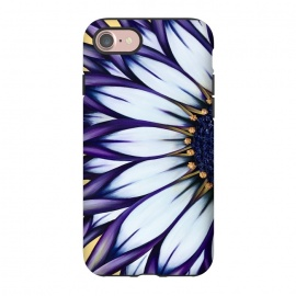 iPhone 8/7  Wild African Daisy by Denise Cassidy Wood