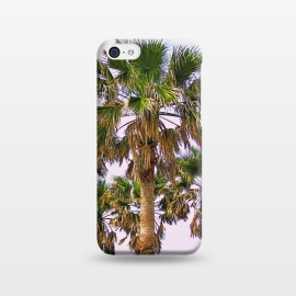 iPhone 5C  Vacay II by Uma Prabhakar Gokhale (color, digital manipulation, coconuts, coconut trees, palms, palm trees, california, sunset, nature, vacation, travel, beach)
