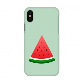 iPhone X  watermelon by TMSarts